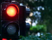 Red signal lights. Red light signals danger and prohibition of access royalty free stock images