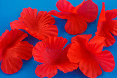 Red silk petals Royalty Free Stock Photography