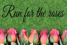 Red silk roses and artificial green grass for the running of the thoroughbred race called the Kentucky Derby. stock photo
