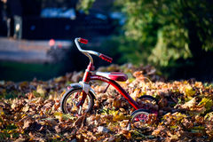 Red and Silver Trike Bike during Daytime Stock Images