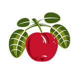 Red simple vector cherry with green leaves, ripe sweet berry ill Royalty Free Stock Image