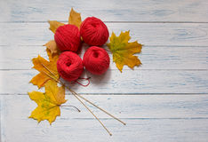 Red skeins and fallen yellow leaves are on a table. Red skeins and fallen yellow leaves are on a white wooden background. Тop view Royalty Free Stock Photo