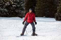 Red skier Royalty Free Stock Image