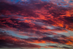Red skies Royalty Free Stock Photos