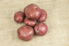 Red Skin Potatoes Royalty Free Stock Photos