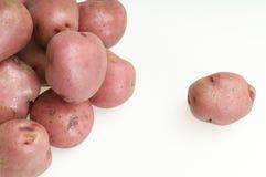 Red skin potatoes Stock Photos