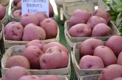 Red skin potatoes for sale Stock Photos