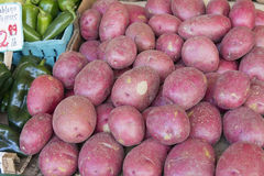 Red Skin Potatoes Stall Display. Red Skin Potatoes Display next to Chili Peppers at Farmers Market Fruits and Vegetables Stall Royalty Free Stock Image