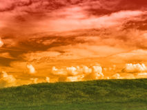 Red sky and meadow Stock Photography