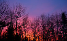 Red sky in the morning Stock Photo