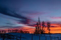 Red sky at night, sunset, Cowboy Trail, Alberta, Canada. The red sky bursts forward sillouhetting the trees against it Stock Photography