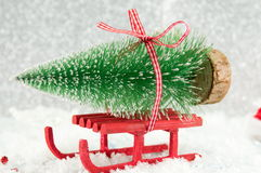Red sleigh carrying a small Christmas tree Royalty Free Stock Photography