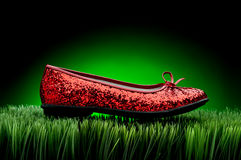 Red slipper on green grass Stock Photos