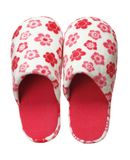 Red slippers with flower print isolated on white background. Close up, high resolution Royalty Free Stock Images