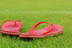 Red slippers lay on the the green grass. Royalty Free Stock Images