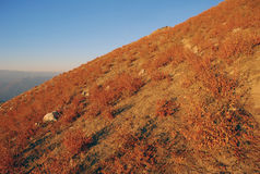 Red slope in the Tien Shan mountains in the autumn Stock Image