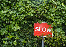 Red slow sign in a bushes. Red slow alert sign in a green bushes stock photos