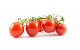 Red small cherry tomatoes on a white background.  stock images