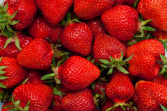 Red small strawberries in spring Royalty Free Stock Photo