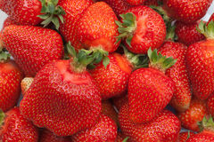 Red small strawberries in spring Royalty Free Stock Photos