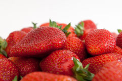 Red small strawberries in spring Stock Image