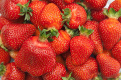 Red small strawberries in spring Royalty Free Stock Image