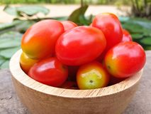 Small tomato Royalty Free Stock Photo
