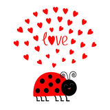 Red smiling lady bug insect with hearts. Cute cartoon character. Word Love Greeting card. Happy Valentines Day. White background. Royalty Free Stock Photos
