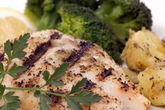 Red Snapper Dinner Royalty Free Stock Image