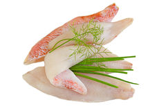 Red Snapper Fillet Royalty Free Stock Photos