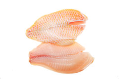 Red snapper fillets Stock Photos