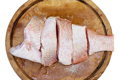 Red snapper fish fillet. On wood block Royalty Free Stock Photo