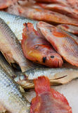 Red snapper. S on a fishmongers counter Royalty Free Stock Photos