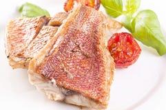Red snapper steak Stock Image