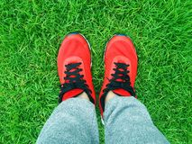 Red sneakers on a background of green grass. Shoes Royalty Free Stock Photos