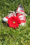 Red sneakers with flower Stock Photos