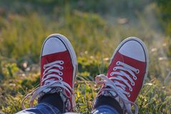 Red sneakers in the grass field, youth and freedom royalty free stock photography