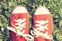 Red sneakers Royalty Free Stock Image