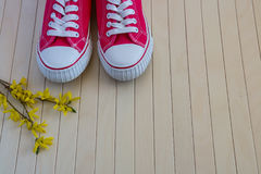 Red sneakers with spring yellow flowers on the wooden background Stock Images