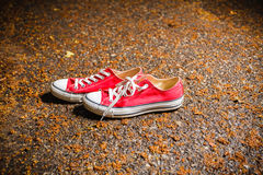 Red sneakers with white laces. Royalty Free Stock Photos