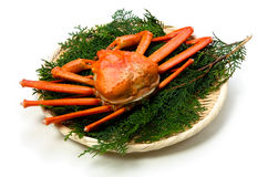 Red snow crab Royalty Free Stock Photos