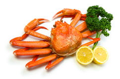 Red snow crab Stock Photos