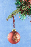 Red snowflake bauble hanging of fir branch Stock Photos