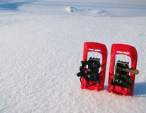 Red snowshoes in snow. On edge of image stock images