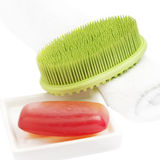 Red Soap Bar with green brush Stock Images