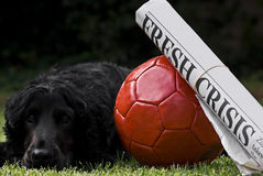Red Soccer Ball With Newspaper Headline & Watchdog Stock Photography