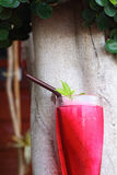 Red soda water in the garden Royalty Free Stock Photography