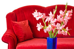 Red sofa. And flowers in blue vase Royalty Free Stock Image