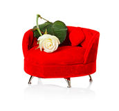 Red sofa, couch with white rose Royalty Free Stock Images