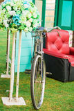Red sofa with vintage bicycle and flower Royalty Free Stock Image